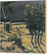 Winter And Spring Ravaged Eel River Wood Print