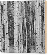 Winter Approaches Wood Print