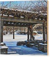 Winter Arbor Wood Print