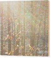 Winter Arbor Light Wood Print