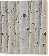 Winter Aspen Tree Forest Portrait Wood Print