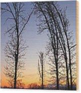 Winter At Dusk Wood Print