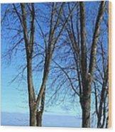 Winter At Lake Huron Wood Print by Rhonda Humphreys