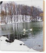 Winter At Oakland Lake Wood Print