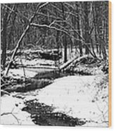 Winter At Pedelo Black And White Wood Print