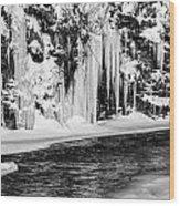 Winter At The Creek Monochrome Wood Print