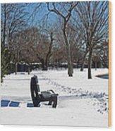 Winter At The Park Wood Print