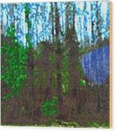 Winter Awaits Spring Wood Print