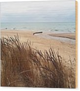 Winter Beach At Pier Cove Wood Print