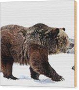 Winter Bear Walk Wood Print