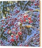 Winter Berries Wood Print
