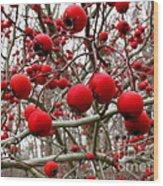 Winter Berryscape Wood Print