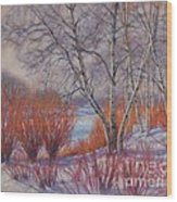 Winter Birches And Red Willows 1 Wood Print