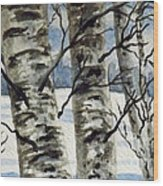 Winter Birches Wood Print