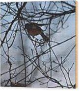 Winter Birds 2 Wood Print