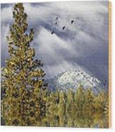 Winter Blessings Wood Print
