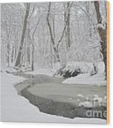 Winter Blizzard Wood Print