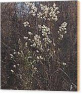 Winter Blossoms Wood Print