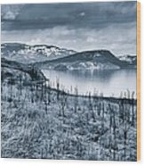 Winter Blues Wood Print by Rod Sterling