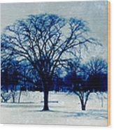 Winter Blues Wood Print