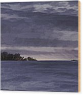 Winter Blues Wood Print by Thomas Young
