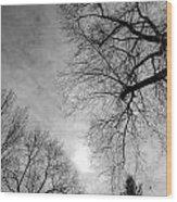 Winter Branch Wood Print