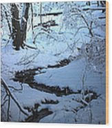 Winter Brook Wood Print