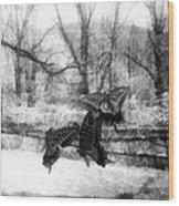 Winter Butterflies Wood Print