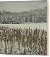 Winter By The Pond Wood Print
