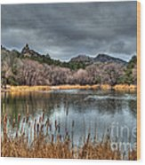 Winter Cattails By The Lake Wood Print