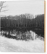 Winter Contrast Wood Print