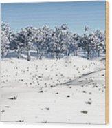 Winter Coppice Wood Print