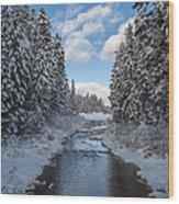 Winter Creek Wood Print by Fran Riley
