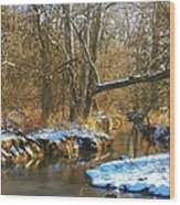 Winter Creek Wood Print by Joyce Kimble Smith