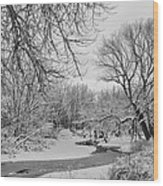 Winter Creek In Black And White Wood Print