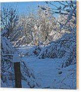 Winter Day II Wood Print