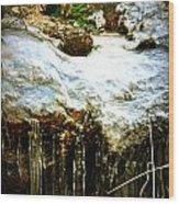 Winter Dells Wood Print