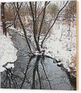 Winter Ditch Wood Print