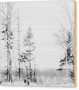 Winter Drawing Wood Print by Jenny Rainbow