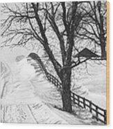 Winter Driveway Wood Print