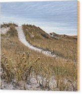 Winter Dune Wood Print