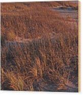 Winter Dunes Iv Wood Print