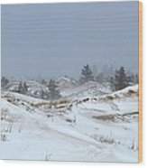 Winter Dunes Wood Print