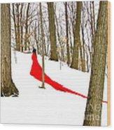 Winter Empress Wood Print