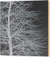 Winter Etching Wood Print