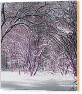 Winter Faeries Wood Print