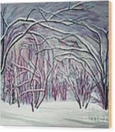 Winter Fairies Wood Print
