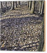 Winter Fall On The Trail Wood Print