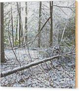 Winter Fallen Tree Wood Print