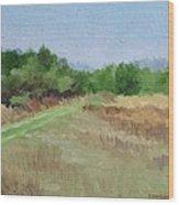 Winter Field N0. 2 Wood Print